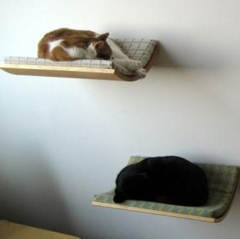 Как сделать полку для котов