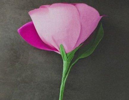 делаем розу из гофрированной бумаги