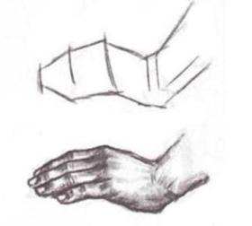Рисуем поэтапно руки