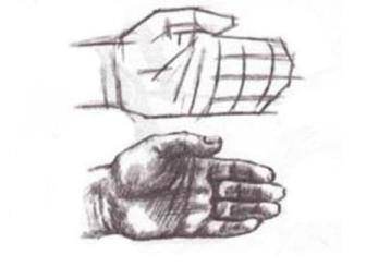Человеческие руки