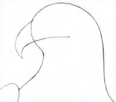 Рисуем орла карандашом
